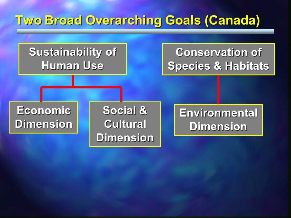 Two Broad Overarching Goals (Canada) Sustainability of Human Use Conservation of Species & Habitats Social & Cultural Dimension Economic Dimension Environmental Dimension