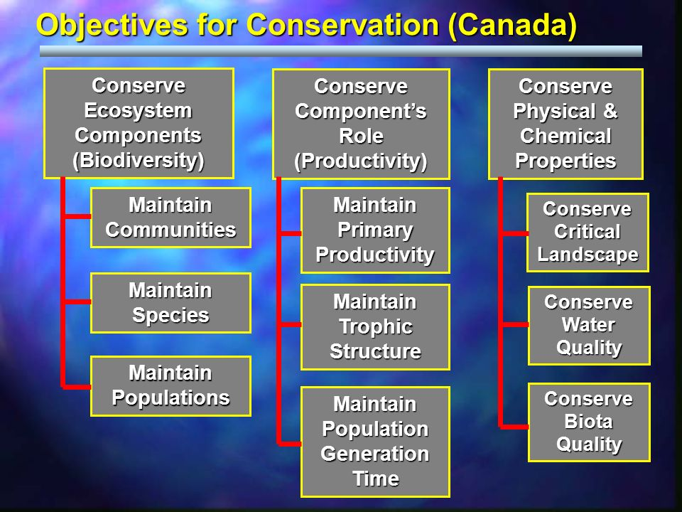 Objectives for Conservation (Canada) Conserve Ecosystem Components (Biodiversity) Conserve Components Role (Productivity) Conserve Critical Landscape