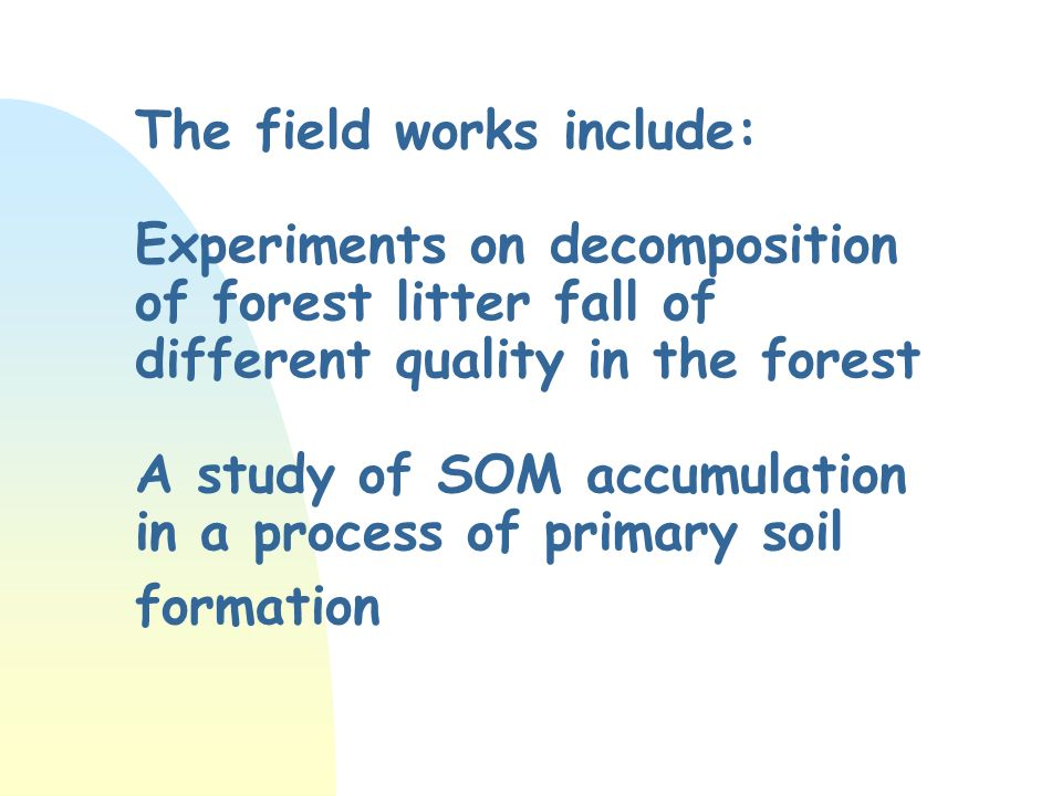 The field works include: Experiments on decomposition of forest litter fall of different quality in the forest A study of SOM accumulation in a process of primary soil formation