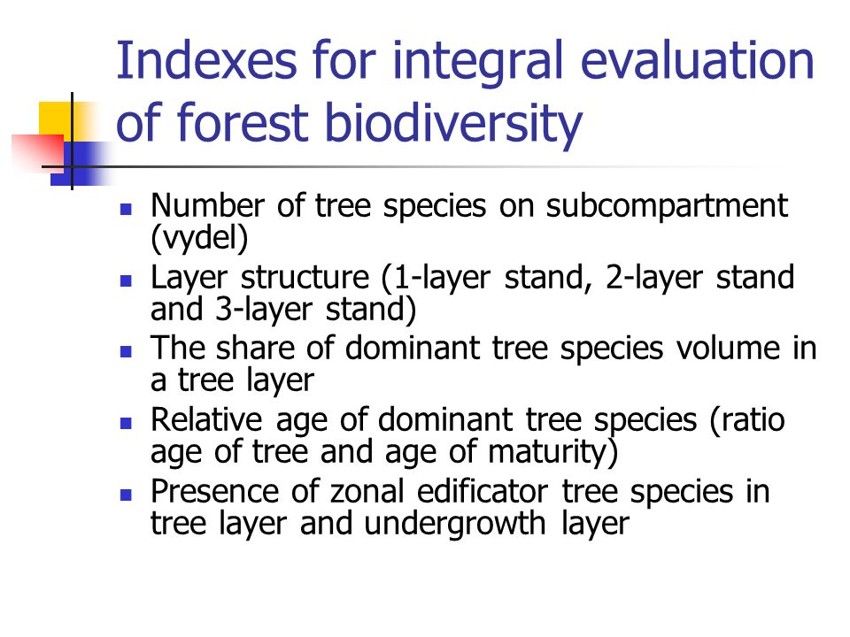 Using CommonGIS for integral evaluation of forest biodiversity