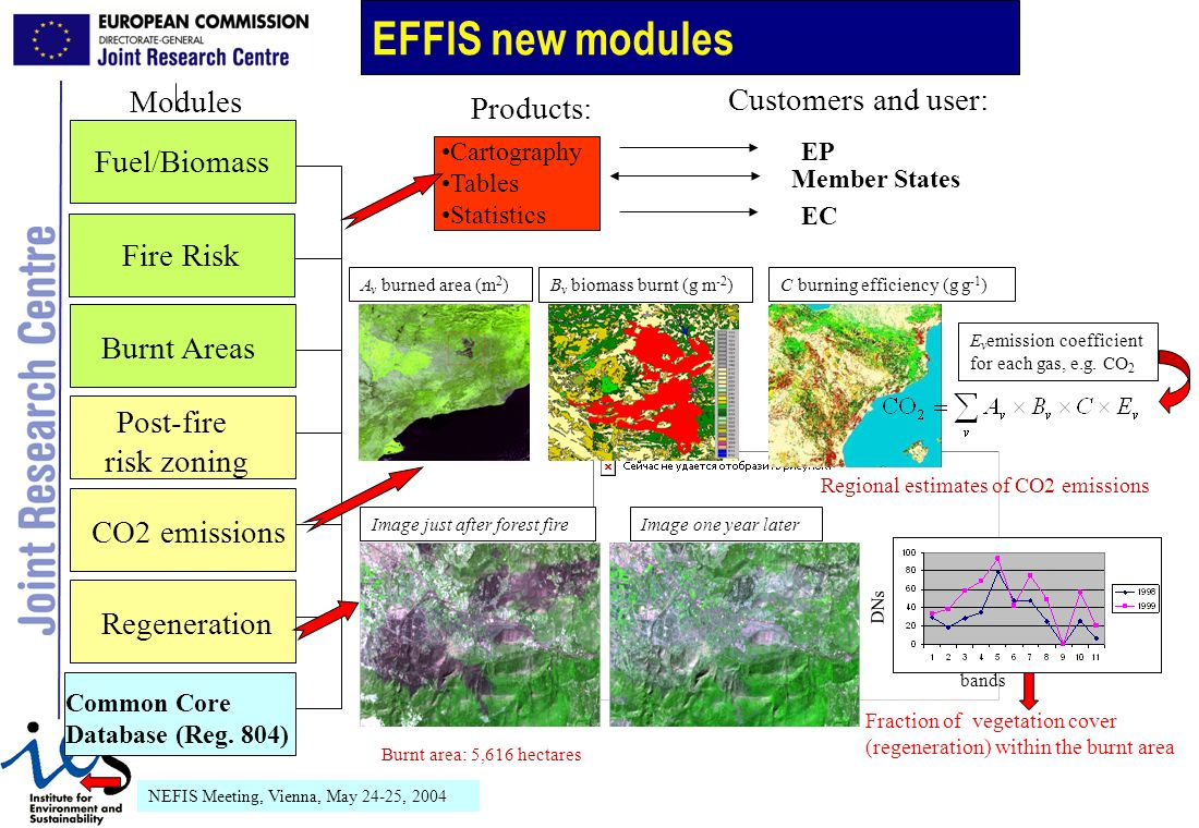 NEFIS Meeting, Vienna, May 24-25, 2004 Cartography Tables Statistics Fire Risk Burnt Areas Regeneration Post-fire risk zoning Fuel/Biomass CO2 emissions Member States EC EP Modules Products: Customers and user: Common Core Database (Reg.