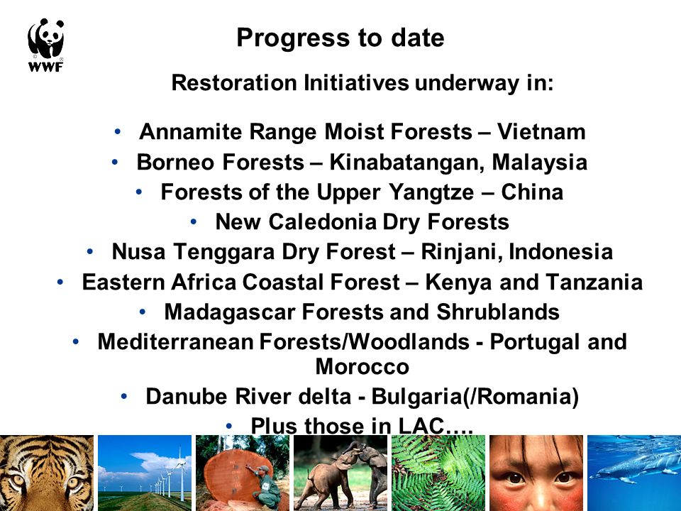 Progress to date Restoration Initiatives underway in: Annamite Range Moist Forests – Vietnam Borneo Forests – Kinabatangan, Malaysia Forests of the Upper Yangtze – China New Caledonia Dry Forests Nusa Tenggara Dry Forest – Rinjani, Indonesia Eastern Africa Coastal Forest – Kenya and Tanzania Madagascar Forests and Shrublands Mediterranean Forests/Woodlands - Portugal and Morocco Danube River delta - Bulgaria(/Romania) Plus those in LAC….