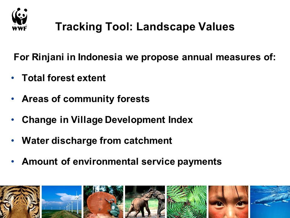 Tracking Tool: Landscape Values For Rinjani in Indonesia we propose annual measures of: Total forest extent Areas of community forests Change in Village Development Index Water discharge from catchment Amount of environmental service payments