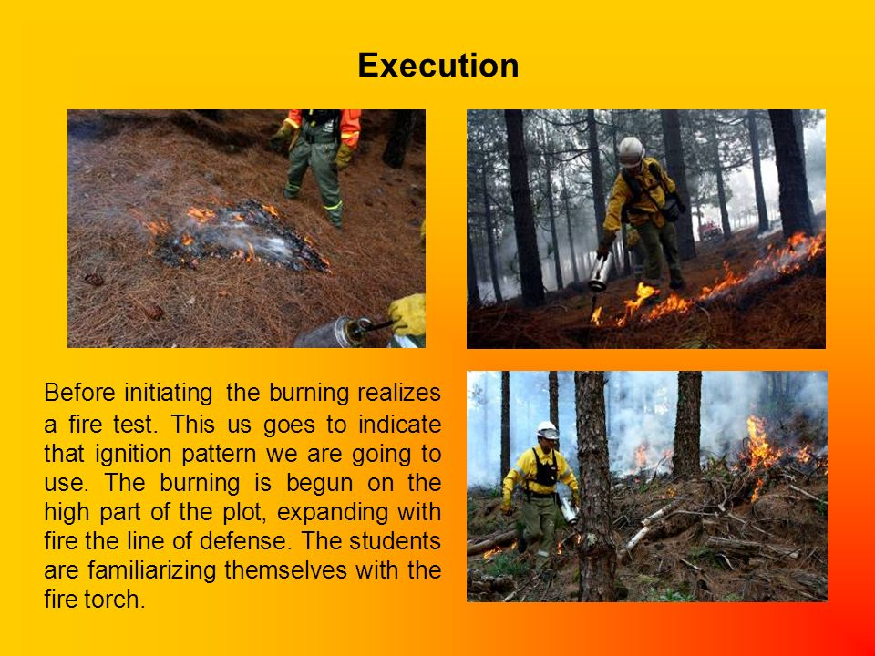 Execution Before initiating the burning realizes a fire test.