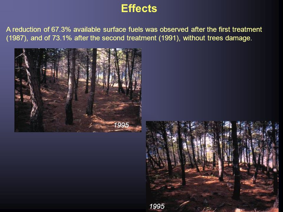 Effects A reduction of 67.3% available surface fuels was observed after the first treatment (1987), and of 73.1% after the second treatment (1991), wi