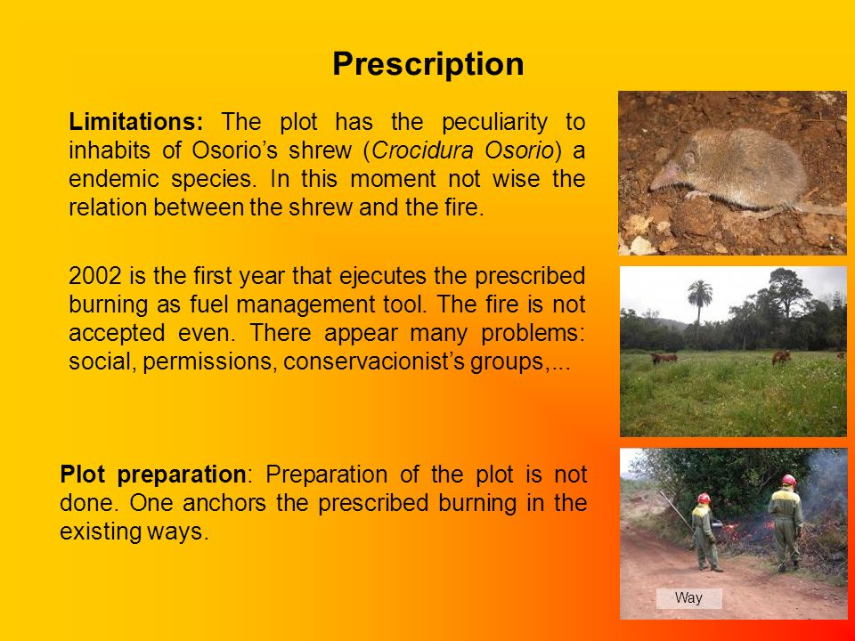 Prescription Plot preparation: Preparation of the plot is not done.