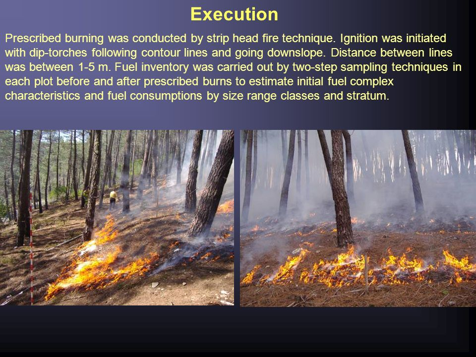 Execution Prescribed burning was conducted by strip head fire technique. Ignition was initiated with dip-torches following contour lines and going dow