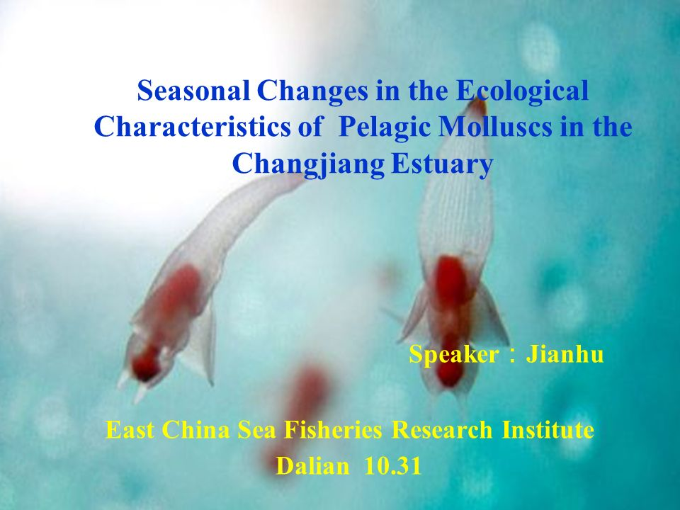 Speaker Jianhu East China Sea Fisheries Research Institute Dalian 10.31 Seasonal Changes in the Ecological Characteristics of Pelagic Molluscs in the Changjiang Estuary