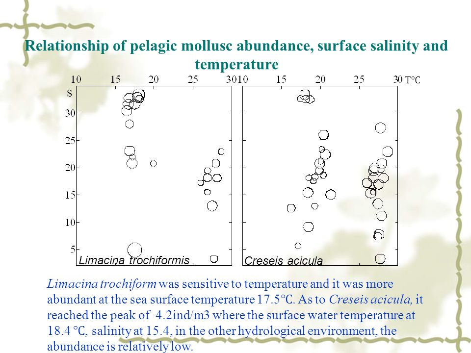 Relationship of pelagic mollusc abundance, surface salinity and temperature T S Limacina trochiformis Creseis acicula Limacina trochiform was sensitive to temperature and it was more abundant at the sea surface temperature 17.5.
