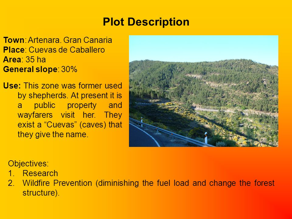 Plot Description Town: Artenara.