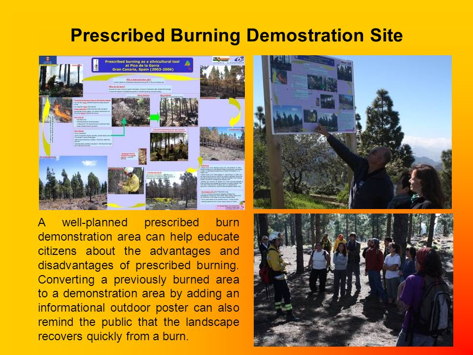A well-planned prescribed burn demonstration area can help educate citizens about the advantages and disadvantages of prescribed burning. Converting a