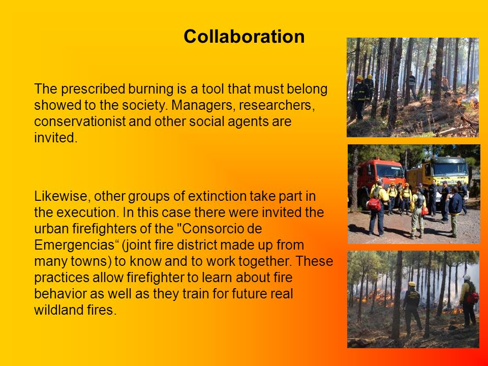 Collaboration The prescribed burning is a tool that must belong showed to the society. Managers, researchers, conservationist and other social agents
