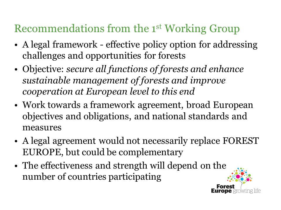 Recommendations from the 1 st Working Group A legal framework - effective policy option for addressing challenges and opportunities for forests Objective: secure all functions of forests and enhance sustainable management of forests and improve cooperation at European level to this end Work towards a framework agreement, broad European objectives and obligations, and national standards and measures A legal agreement would not necessarily replace FOREST EUROPE, but could be complementary The effectiveness and strength will depend on the number of countries participating