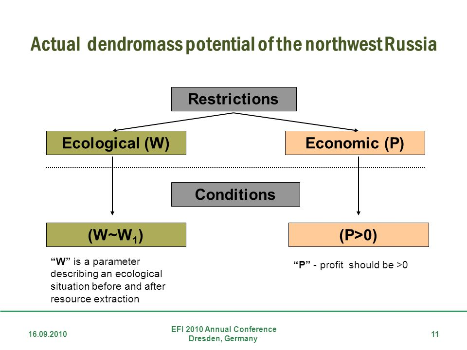 Actual dendromass potential of the northwest Russia Restrictions Ecological (W)Economic (P) Conditions (W~W 1 )(P>0) W is a parameter describing an ecological situation before and after resource extraction P - profit should be >0 EFI 2010 Annual Conference Dresden, Germany 16.09.201011