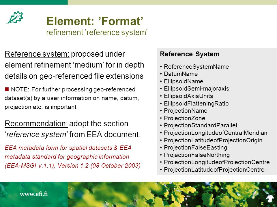 Element: Format refinement reference system Reference system: proposed under element refinement medium for in depth details on geo-referenced file extensions NOTE: For further processing geo-referenced dataset(s) by a user information on name, datum, projection etc.