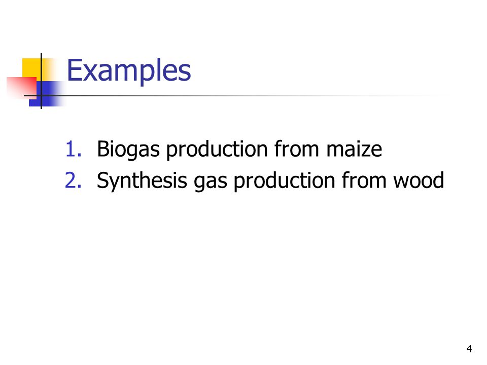 4 Examples 1.Biogas production from maize 2.Synthesis gas production from wood