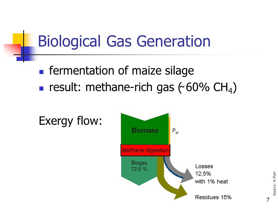 7 Biological Gas Generation fermentation of maize silage result: methane-rich gas (̴ 60% CH 4 ) Exergy flow: Source: K.Purr