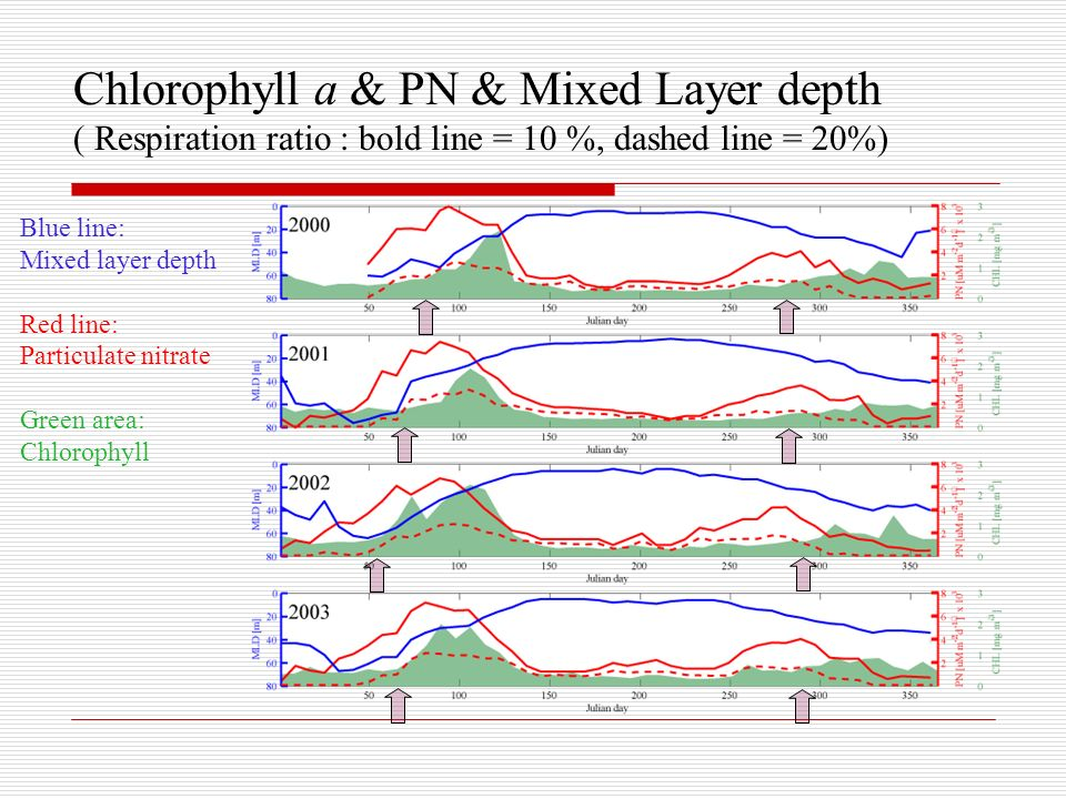 Chlorophyll a & PN & Mixed Layer depth ( Respiration ratio : bold line = 10 %, dashed line = 20%) Blue line: Mixed layer depth Red line: Particulate nitrate Green area: Chlorophyll