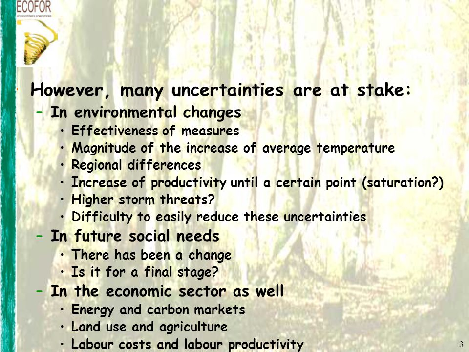 3 However, many uncertainties are at stake: –In environmental changes Effectiveness of measures Magnitude of the increase of average temperature Regional differences Increase of productivity until a certain point (saturation ) Higher storm threats.
