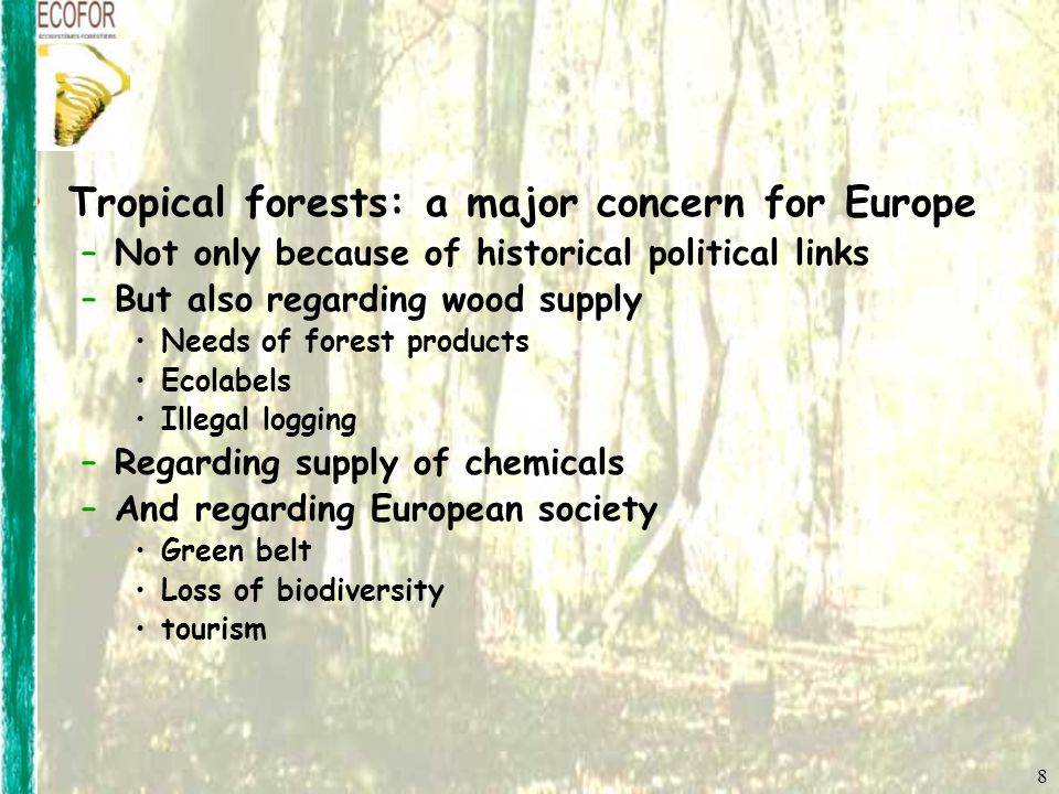8 Tropical forests: a major concern for Europe –Not only because of historical political links –But also regarding wood supply Needs of forest products Ecolabels Illegal logging –Regarding supply of chemicals –And regarding European society Green belt Loss of biodiversity tourism