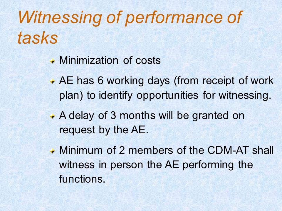 Witnessing of performance of tasks Minimization of costs AE has 6 working days (from receipt of work plan) to identify opportunities for witnessing.