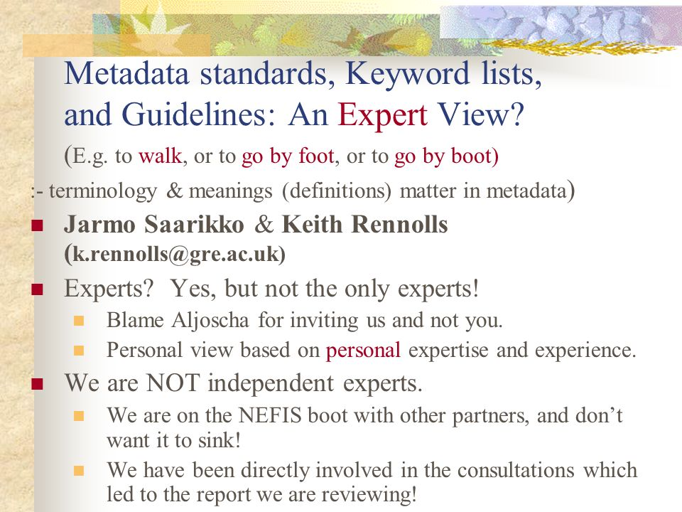 Metadata standards, Keyword lists, and Guidelines: An Expert View.