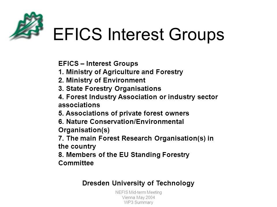 NEFIS Mid-term Meeting Vienna May 2004 WP3 Summary EFICS Interest Groups EFICS – Interest Groups 1.