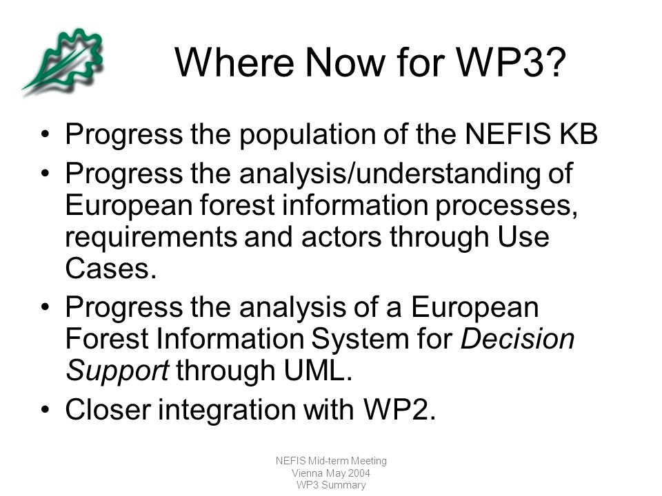 NEFIS Mid-term Meeting Vienna May 2004 WP3 Summary Where Now for WP3.