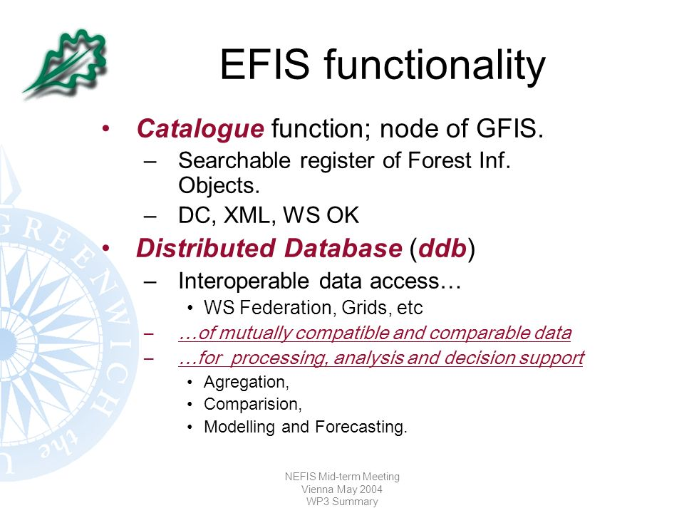 NEFIS Mid-term Meeting Vienna May 2004 WP3 Summary EFIS functionality Catalogue function; node of GFIS.