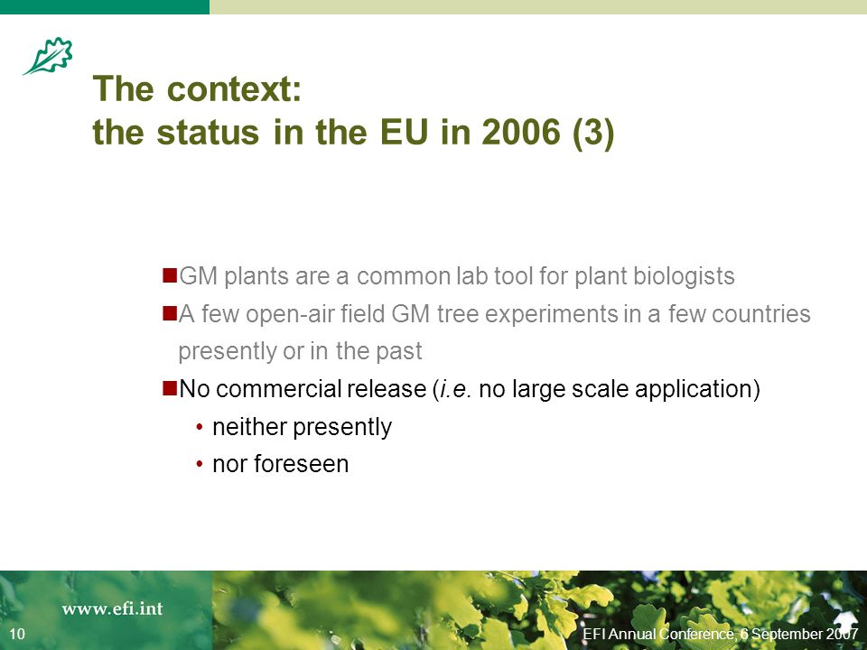 EFI Annual Conference, 6 September 200710 The context: the status in the EU in 2006 (3) GM plants are a common lab tool for plant biologists A few open-air field GM tree experiments in a few countries presently or in the past No commercial release (i.e.