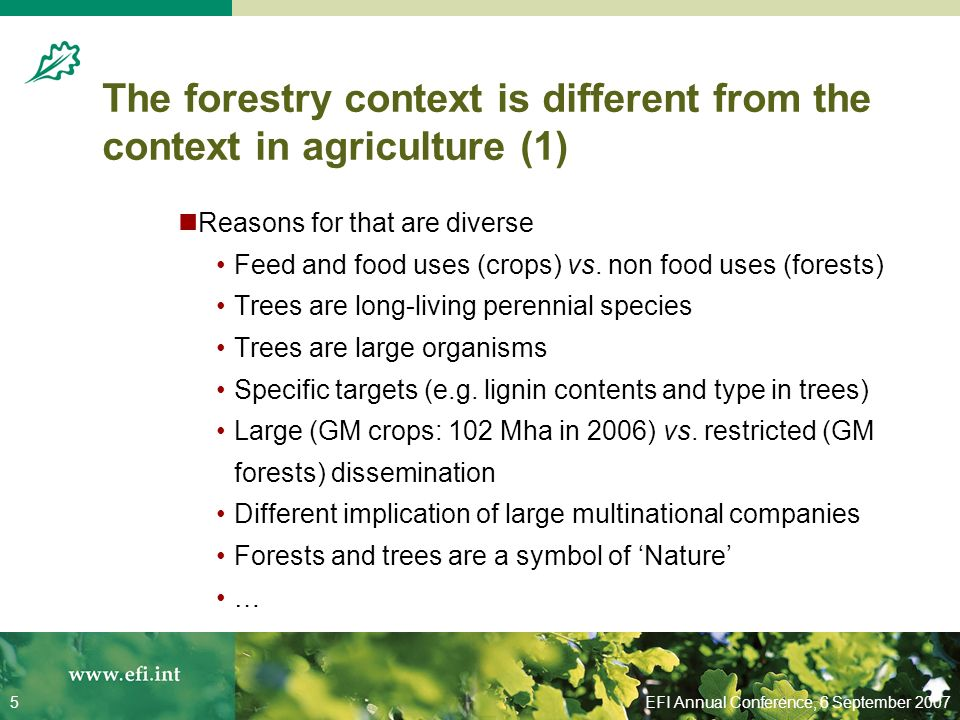 EFI Annual Conference, 6 September 20075 The forestry context is different from the context in agriculture (1) Reasons for that are diverse Feed and food uses (crops) vs.