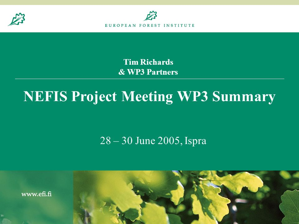 20.8.20041 Tim Richards & WP3 Partners NEFIS Project Meeting WP3 Summary 28 – 30 June 2005, Ispra