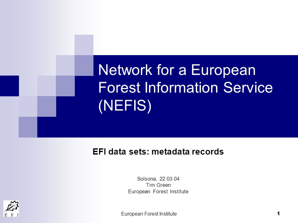 European Forest Institute 1 Network for a European Forest Information Service (NEFIS) EFI data sets: metadata records Solsona, 22.03.04 Tim Green Euro