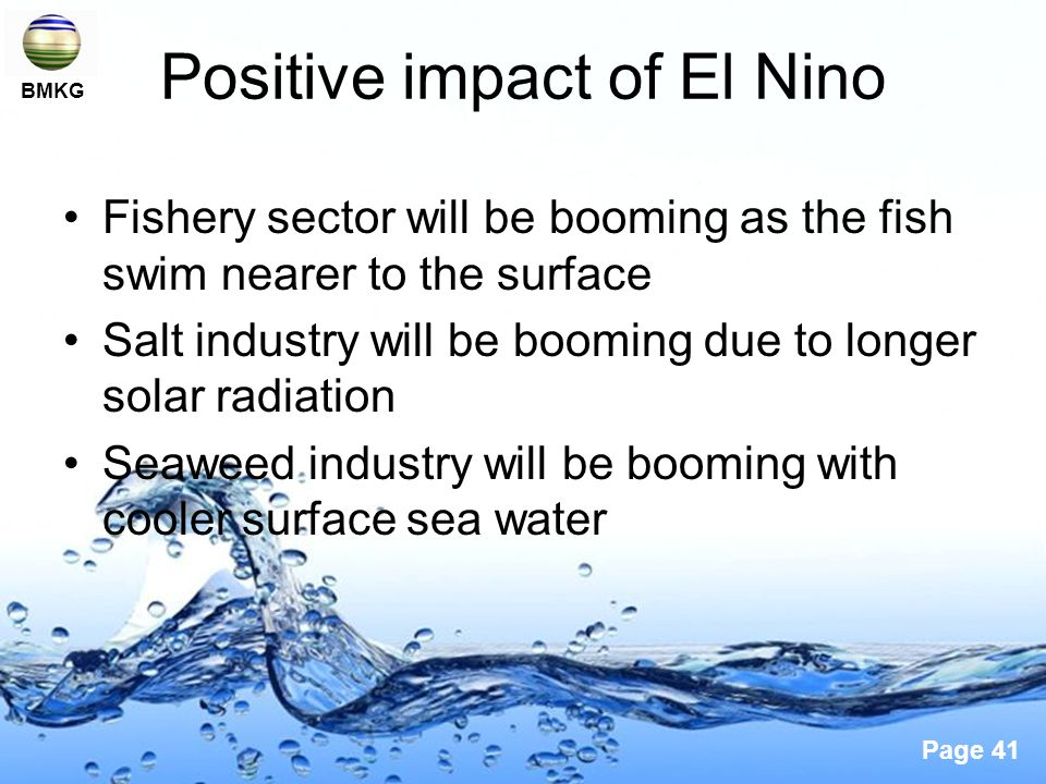 Page 41 Positive impact of El Nino Fishery sector will be booming as the fish swim nearer to the surface Salt industry will be booming due to longer solar radiation Seaweed industry will be booming with cooler surface sea water BMKG