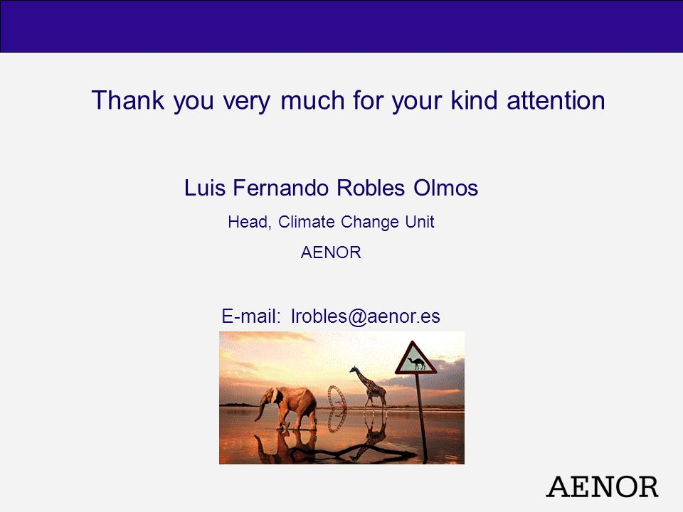 Thank you very much for your kind attention Luis Fernando Robles Olmos Head, Climate Change Unit AENOR