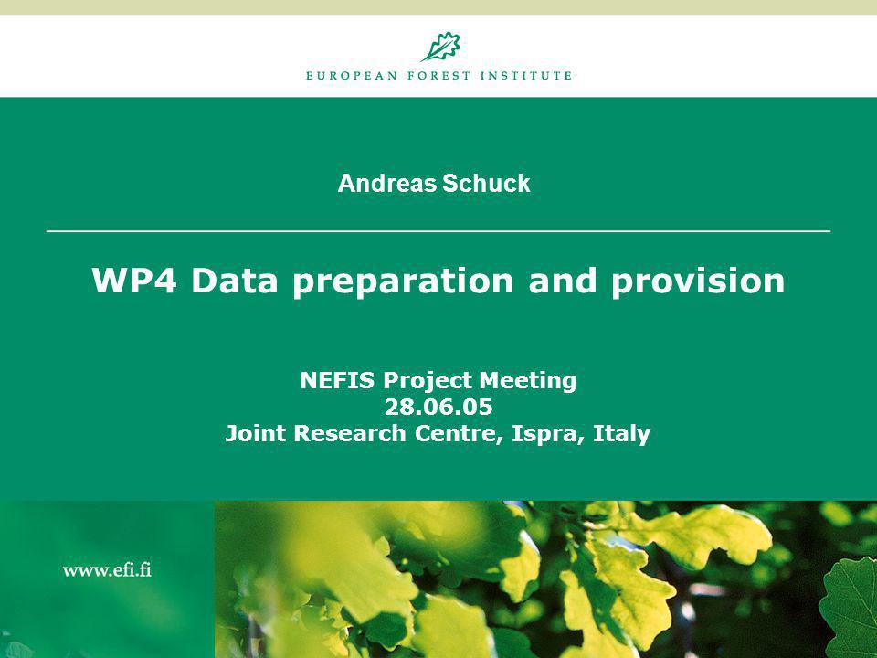 Andreas Schuck WP4 Data preparation and provision NEFIS Project Meeting 28.06.05 Joint Research Centre, Ispra, Italy