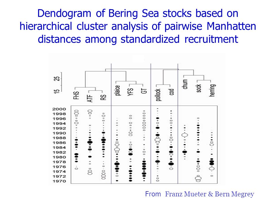 Dendogram of Bering Sea stocks based on hierarchical cluster analysis of pairwise Manhatten distances among standardized recruitment From Franz Mueter & Bern Megrey