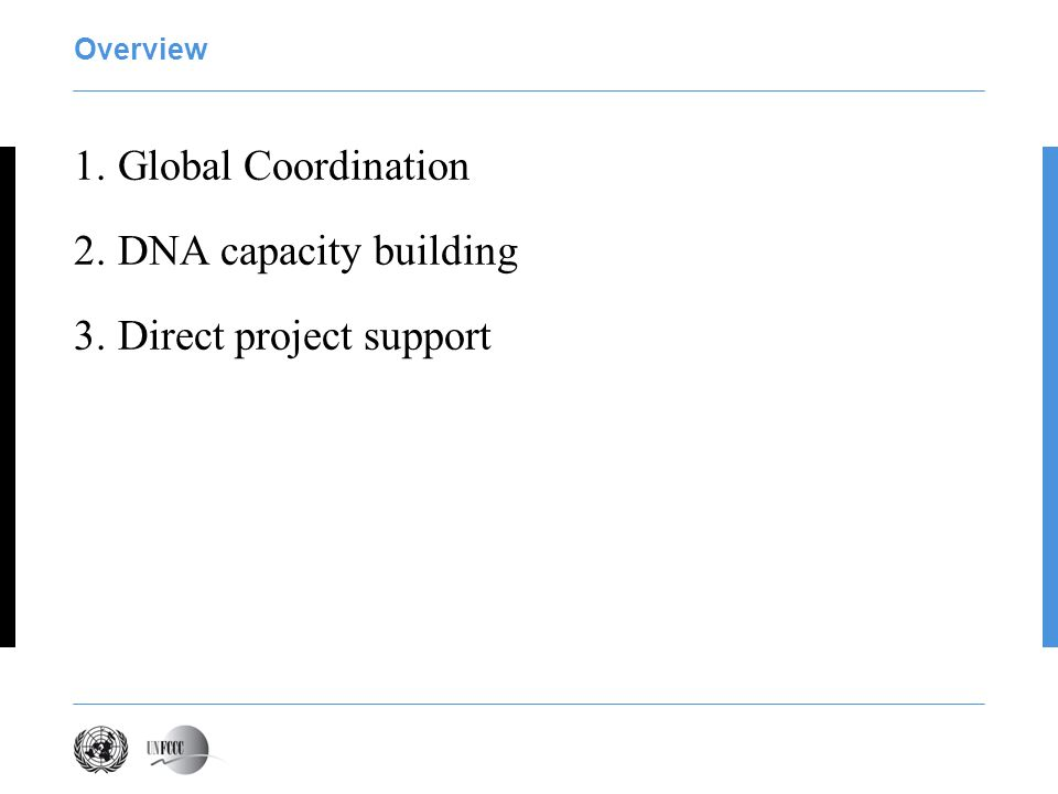Overview 1. Global Coordination 2. DNA capacity building 3. Direct project support