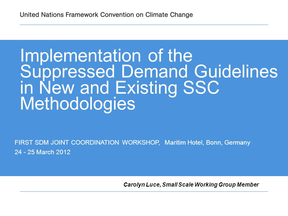 Implementation of the Suppressed Demand Guidelines in New and Existing SSC Methodologies Carolyn Luce, Small Scale Working Group Member FIRST SDM JOINT COORDINATION WORKSHOP, Maritim Hotel, Bonn, Germany 24 - 25 March 2012