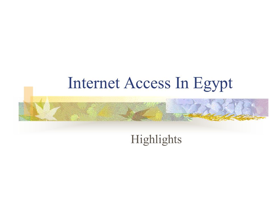 Internet Access In Egypt Highlights