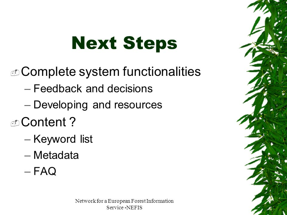 Network for a European Forest Information Service -NEFIS Next Steps Complete system functionalities –Feedback and decisions –Developing and resources
