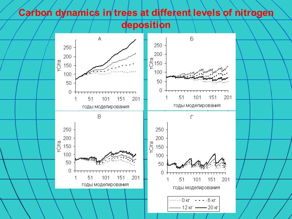 Carbon dynamics in soil at different levels of nitrogen deposition