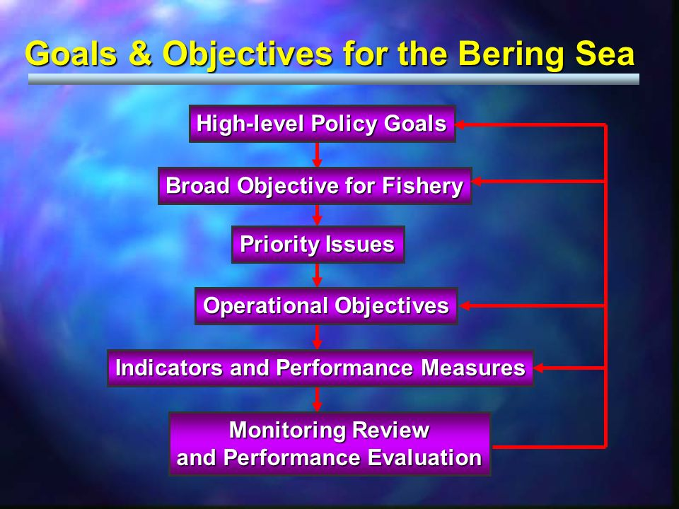 Goals & Objectives for the Bering Sea High-level Policy Goals Broad Objective for Fishery Priority Issues Operational Objectives Indicators and Performance Measures Monitoring Review and Performance Evaluation