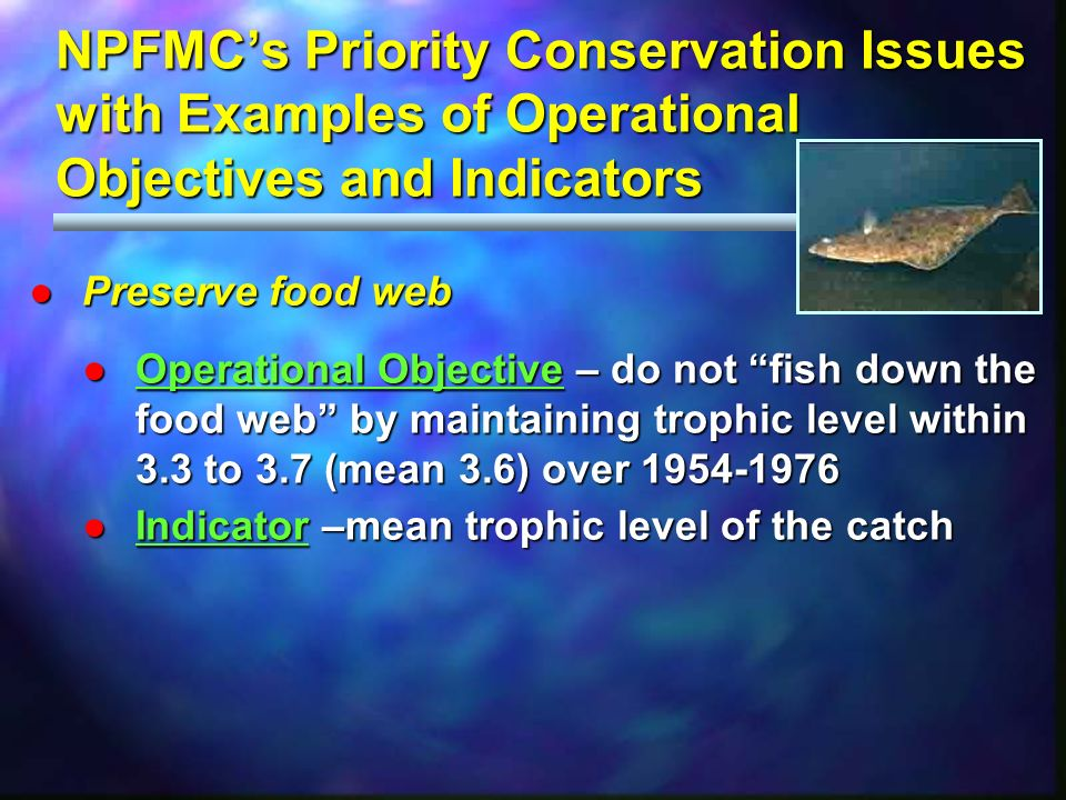 NPFMCs Priority Conservation Issues with Examples of Operational Objectives and Indicators Preserve food webPreserve food web Operational Objective –