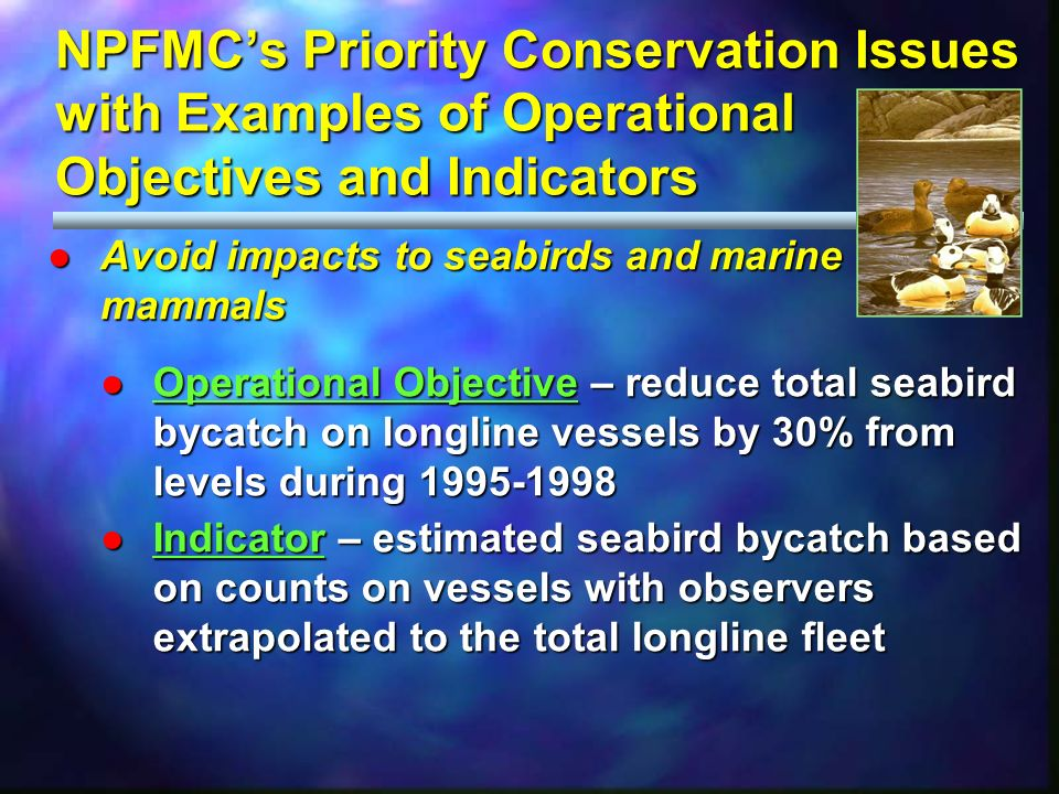 NPFMCs Priority Conservation Issues with Examples of Operational Objectives and Indicators Avoid impacts to seabirds and marine mammalsAvoid impacts to seabirds and marine mammals Operational Objective – reduce total seabird bycatch on longline vessels by 30% from levels during 1995-1998Operational Objective – reduce total seabird bycatch on longline vessels by 30% from levels during 1995-1998 Indicator – estimated seabird bycatch based on counts on vessels with observers extrapolated to the total longline fleetIndicator – estimated seabird bycatch based on counts on vessels with observers extrapolated to the total longline fleet