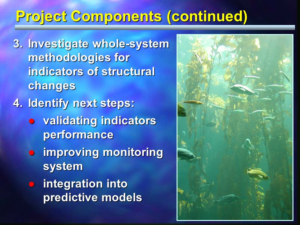 Project Components (continued) 3.Investigate whole-system methodologies for indicators of structural changes 4.Identify next steps: validating indicators performancevalidating indicators performance improving monitoring systemimproving monitoring system integration into predictive modelsintegration into predictive models