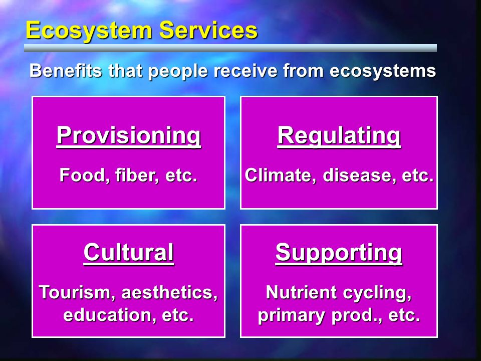 Benefits that people receive from ecosystems Ecosystem Services Provisioning Food, fiber, etc. Regulating Climate, disease, etc. Cultural Tourism, aes