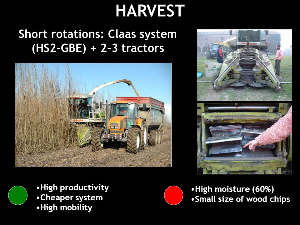 HARVEST Short rotations: Claas system (HS2-GBE) tractors High productivity Cheaper system High mobility High moisture (60%) Small size of wood chips