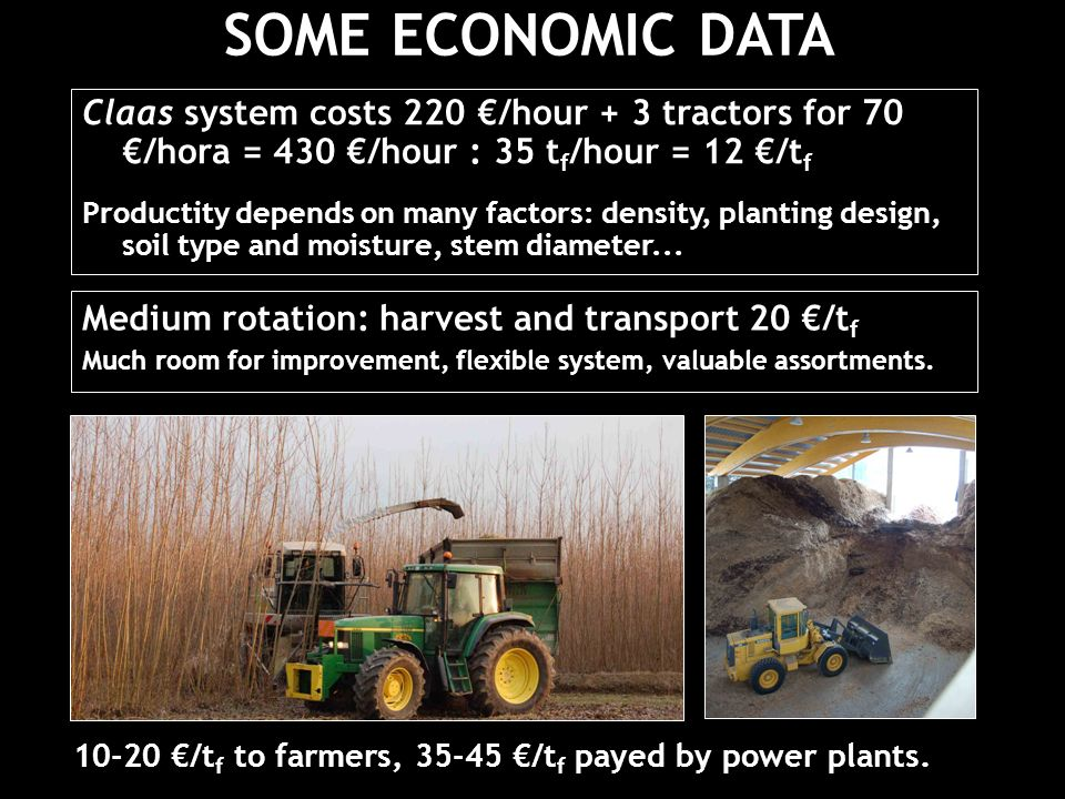 Claas system costs 220 /hour + 3 tractors for 70 /hora = 430 /hour : 35 t f /hour = 12 /t f Productity depends on many factors: density, planting design, soil type and moisture, stem diameter...