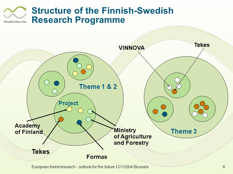 European forest research - outlook for the future 12112004 Brussels8 Structure of the Finnish-Swedish Research Programme Theme 1 & 2 Ministry of Agriculture and Forestry Formas Tekes Academy of Finland Project Theme 3 VINNOVA Tekes